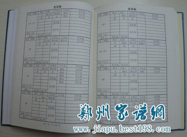 河南安阳杨氏家谱图片