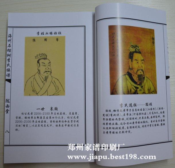 江苏连云港李氏家谱图片